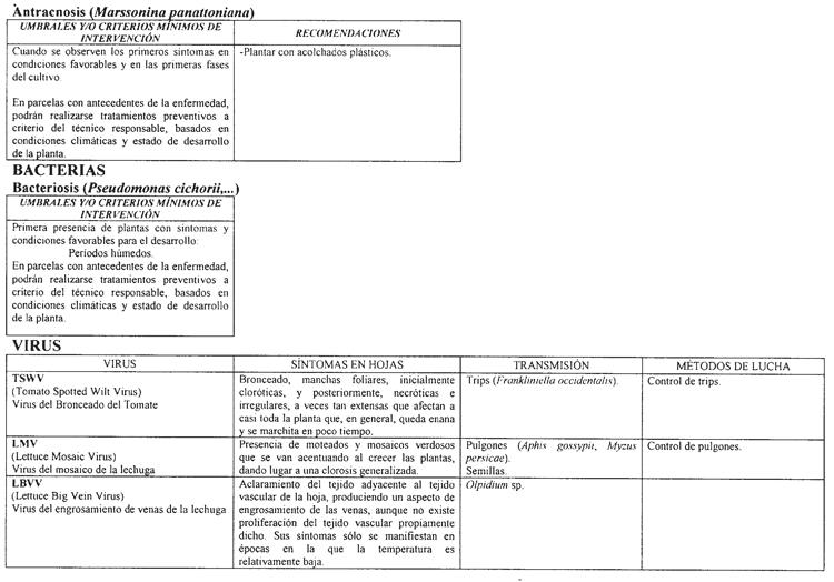 BOE.es - Documento BOE-A-2004-3066