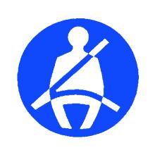 Pictograma indicativo del uso obligatorio del cinturón de seguridad en los asientos de los vehículos destinados al transporte de personas de más de nueve plazas, incluido el conductor, en los que figure el mismo